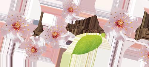 Ramo con fiori rosa decorativi Podere Francesco Abruzzo
